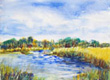 Marsh Paintings
